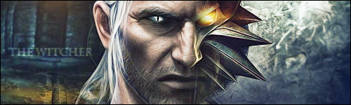 The Witcher 2 Signature