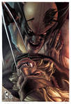 Wolverine: Evolution 2 cover issue 313