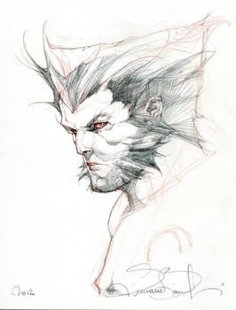 Wolverine Convention Sketch.
