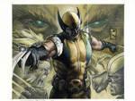Wolverine: Evolution European Hard cover edition