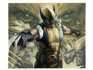 Wolverine: Evolution European Hard cover edition by simonebianchi