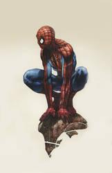 Spiderman Illustration