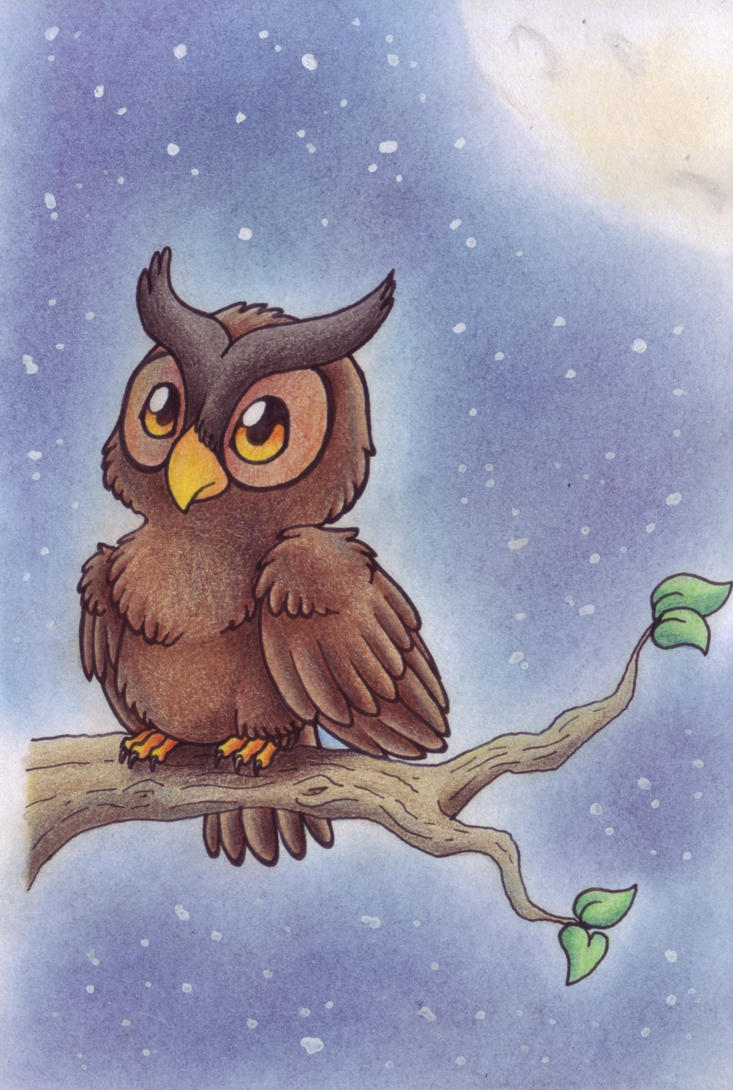 .:Little Owl:. by LostDreamer92
