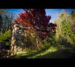 Walk in the Garden of EdeN by MRBee30