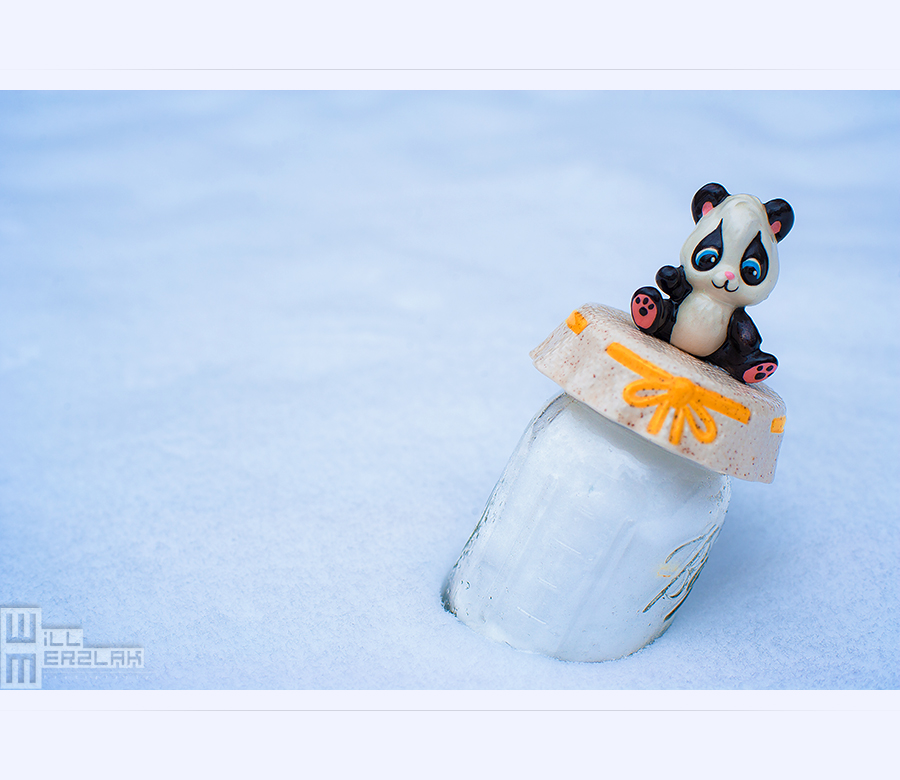 Jar of Snow by MRBee30