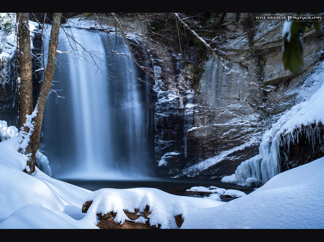 Frozen Wonderland by MRBee30