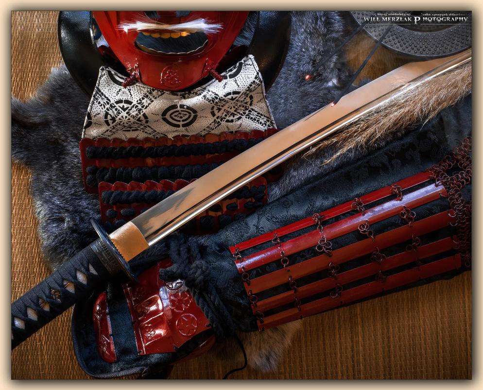 Samurai by MRBee30