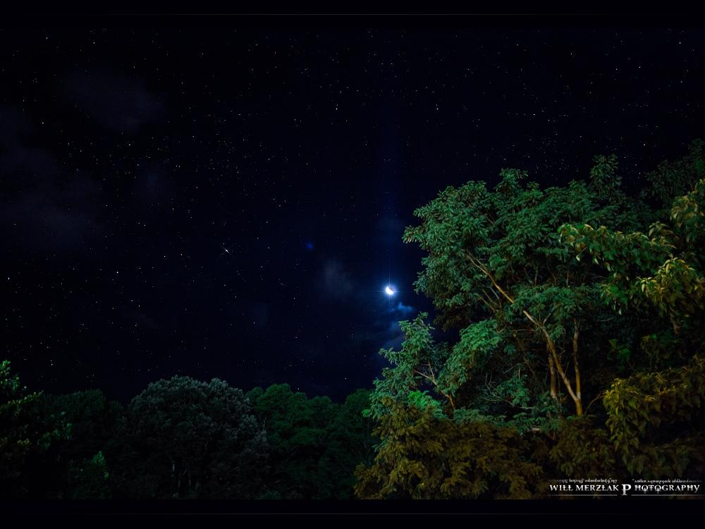 Stars by MRBee30