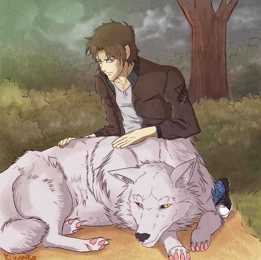 Картинки с кибой волчий дождь