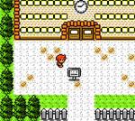 Pokemon Corruption - Random Screenshot 002