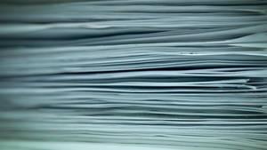 Paper cut dream by lubbo