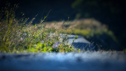 By the road 2 by lubbo