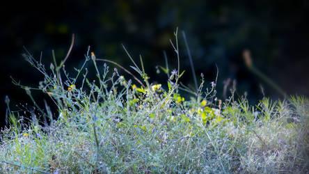Grass composition 4.0