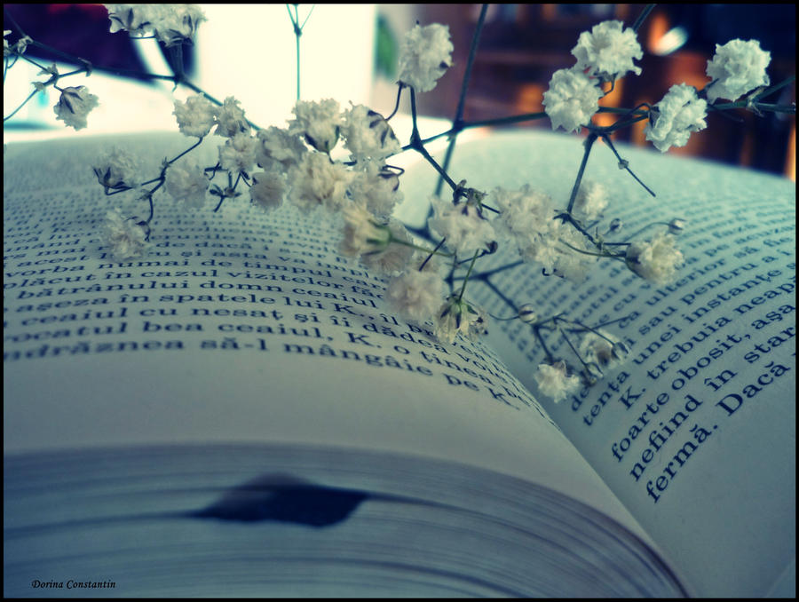 love for books ..