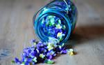 Flowers Glass Wallpaper