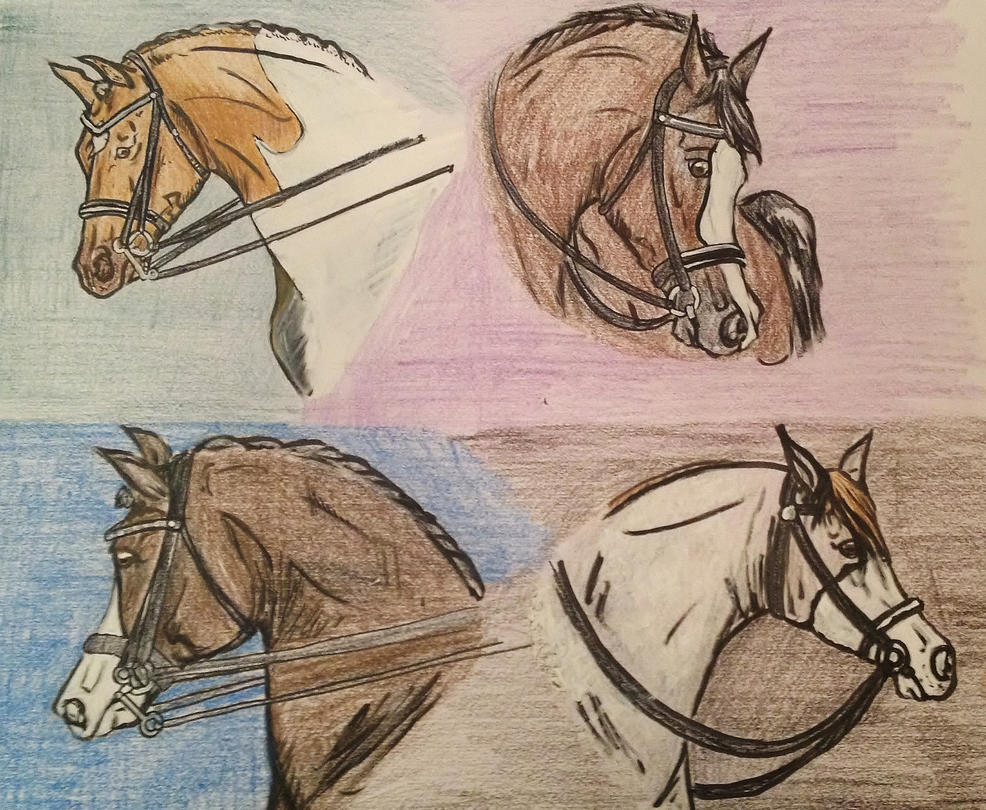 Dressage Entries by CyrillicConsortium