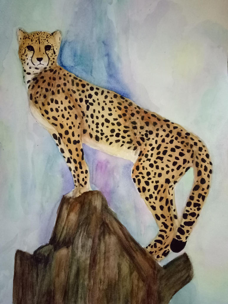 Watercolour painting: Cheetah by Windigo02