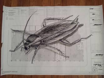 Roach Plan (Changed Plans)