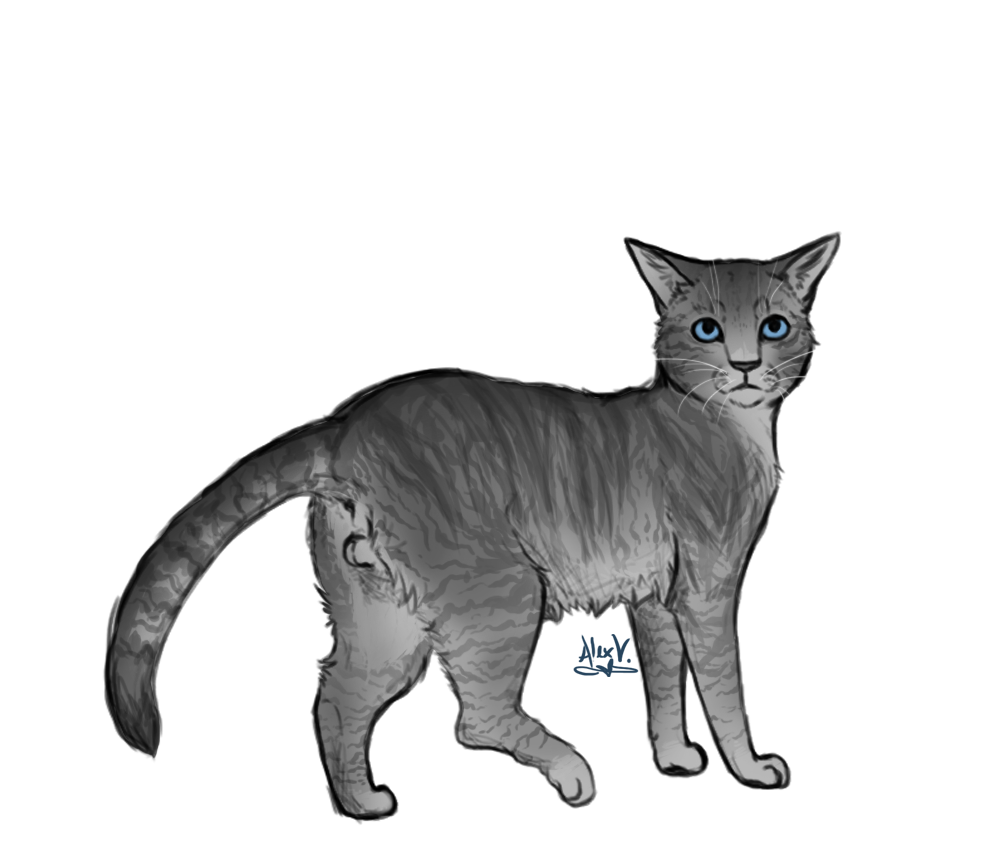 Which Dawn Of The Clans Warrior Cat Are You: Jagged Peak By TheHighHills On DeviantArt