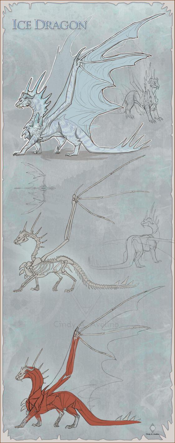 Ice dragon study by CindyWorks