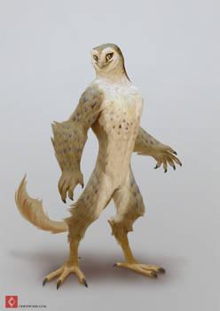 Regulus Project - Owl race color test