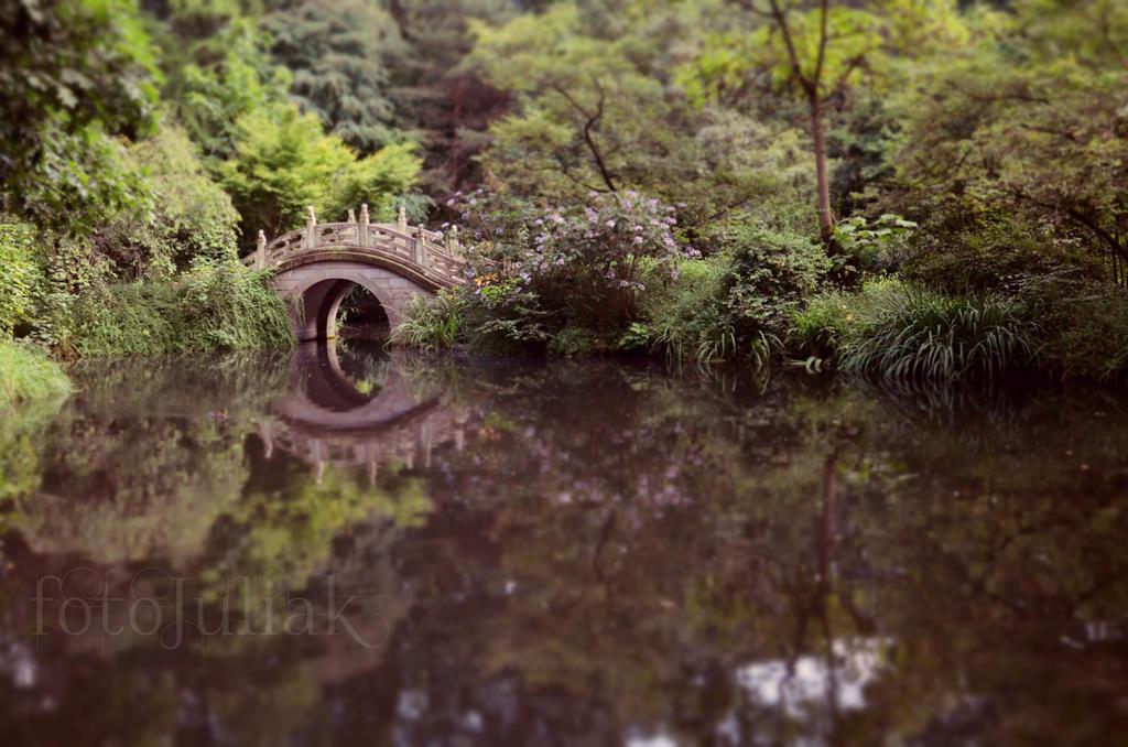 Bridge by fotoJULIAK