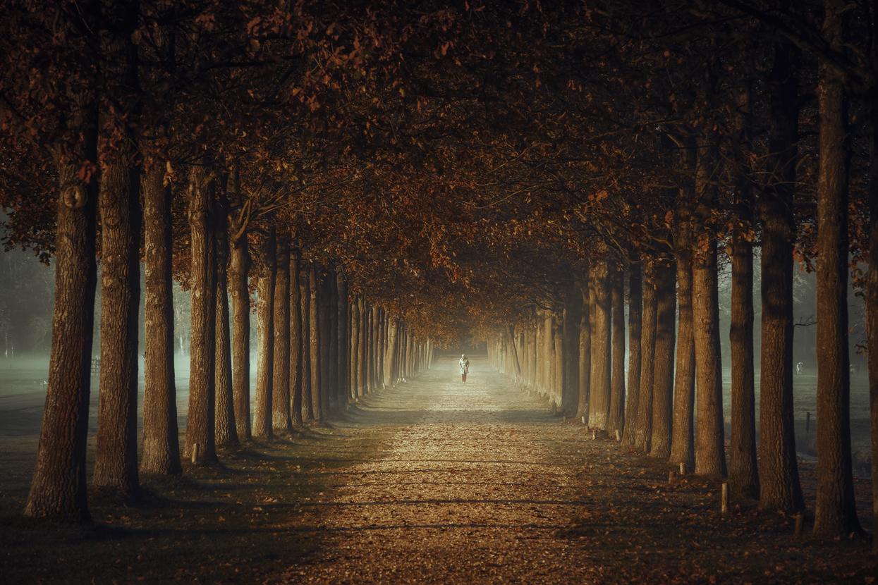 A stroll down memory lane by Northstar76