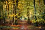Autumn in Speuld