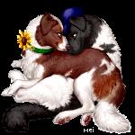 Gunner&Iris