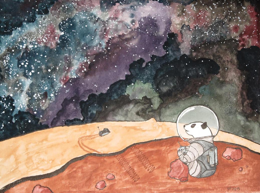 Exploring Mars by LightCarrier