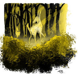 Stranger in The Woods by littlewing09