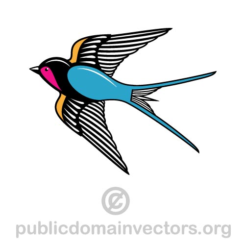 Image of a swallow in public domain by publicdomainvectors