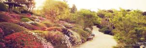 Panorama Park by icynova96