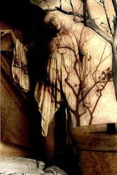 Shadow In A Pot by Marwan-Dandash