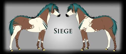Siege Ref by Drasayer