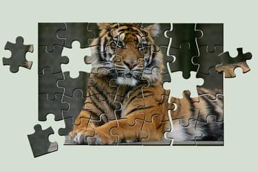Jigsaw Tiger by amerindub