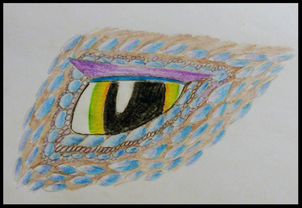 Another Dragon Eye by BlahBlahToucan