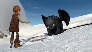 Lovely Night Fury - How to train your dragon