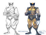 Wolverine before and after