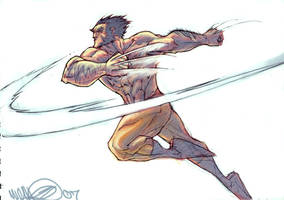 Wolverine SLASH by MicahJGunnell