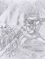 Link in a Battle by zeto
