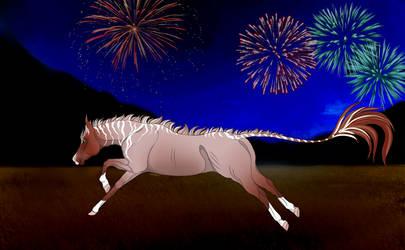 WME Entry 5 - Leoh Enjoying Fireworks by acanter