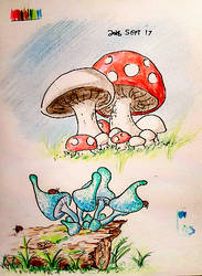 Mushrooms for Fun by Snowfall-The-Cat