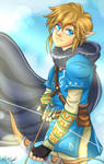 Link [Breath of the Wild]