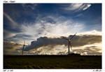 Upolu Point Wind Mills