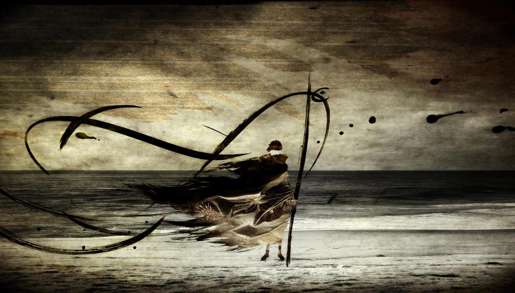 Sand Of Ryukyu by romainjl
