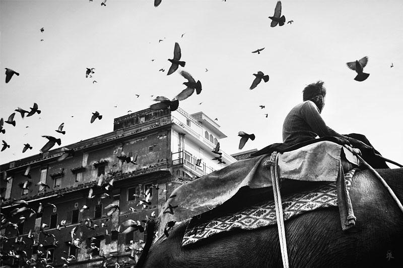 India Jaipur : Take-off by romainjl