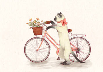 Cycling granny by nei-no