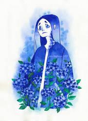 Feeling blue - HYDRANGEA