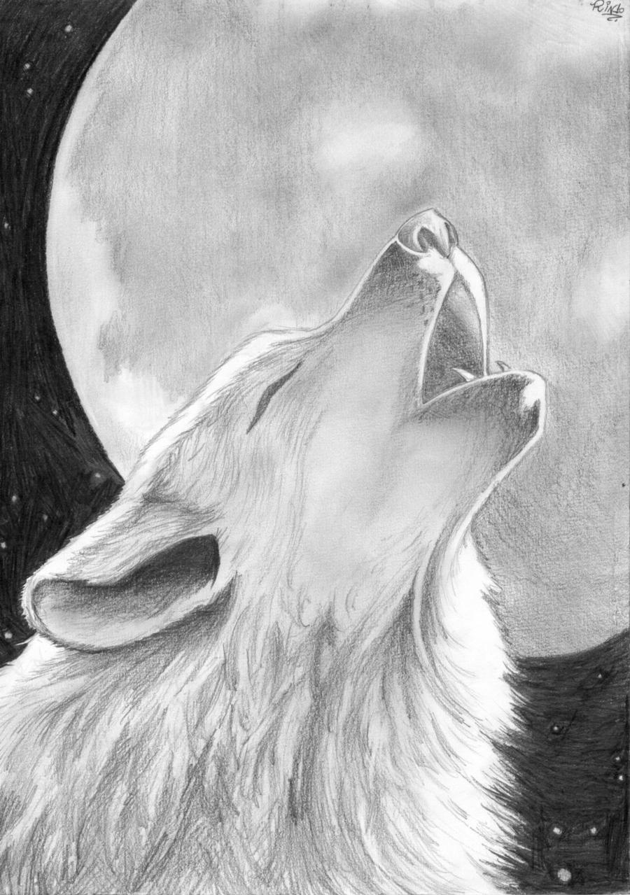 It's just a photo of Ambitious Drawing Of A Wolf Howling At The Moon